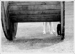 Dogcatbw